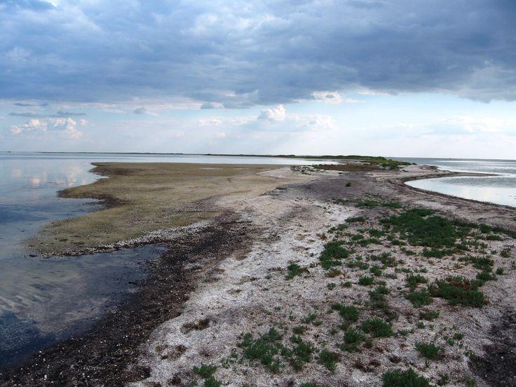 Один из многочисленных островков на озере (затоке) Сиваш