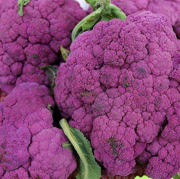 Purple Cauliflour!!