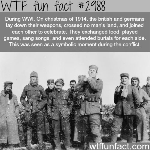 Everybody seems to gloss over the fact that they went back to killing each other the next day-WTF fun facts