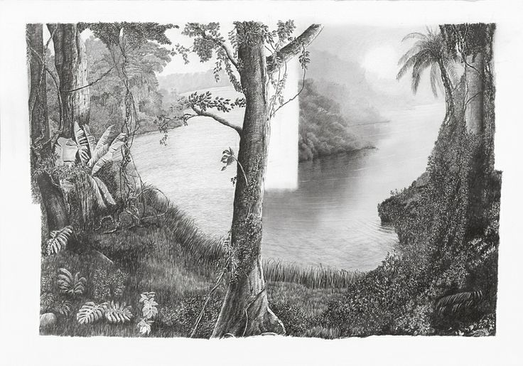 "francisco faria - ""new spread: amazonia (martius variations)"", drawing, graphite on paper, 70 x 100cm, 2014."