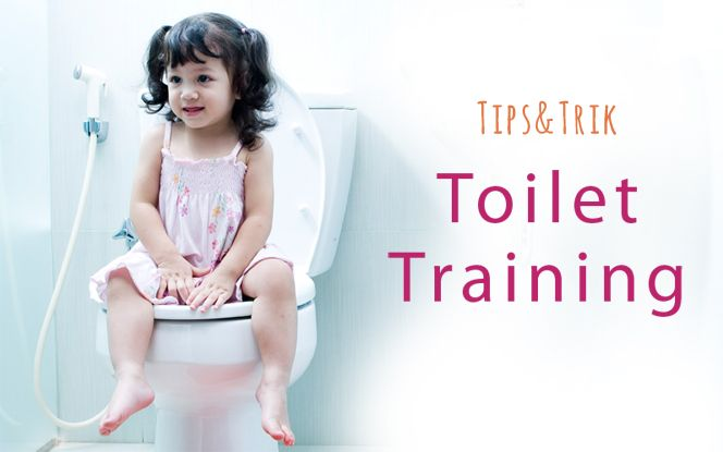 Guide to toilet training (potty training) :