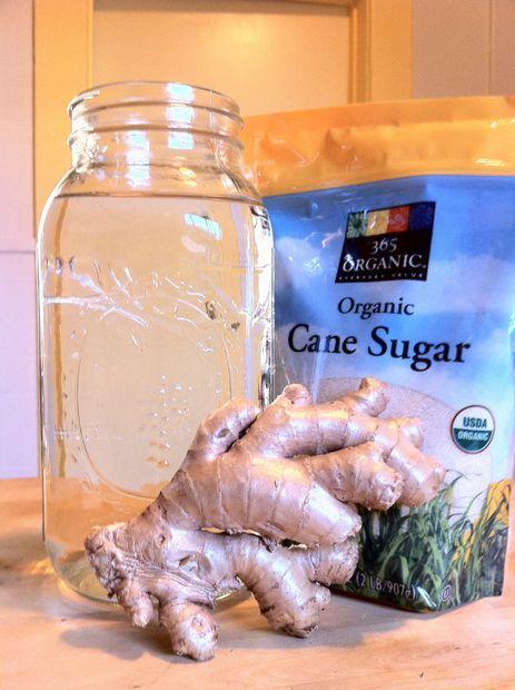 Making a Probiotic Ginger Beer