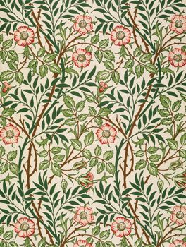 178 Best William Morris Images On Pinterest William