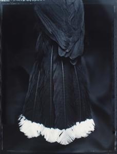Fiona Pardington