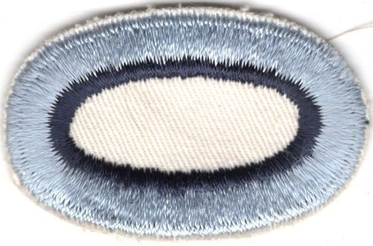 Army Airborne Oval Patch: 101st Aviation Company - cut edge