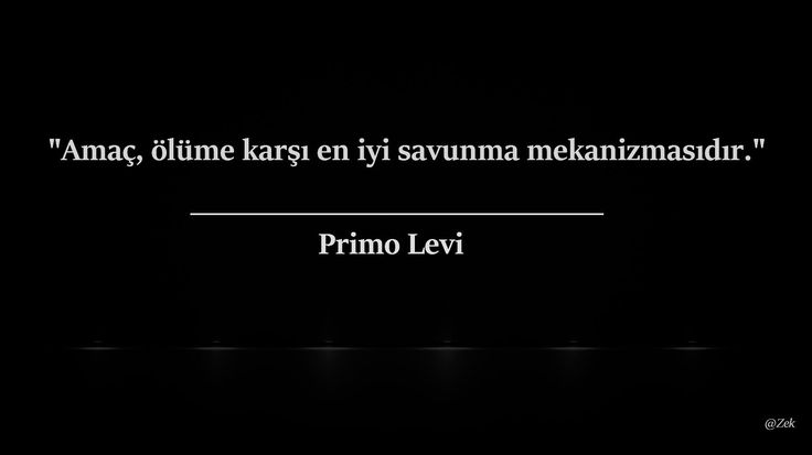 * Primo Levi