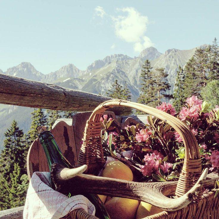 Traumhafte Wanderwege, urige Hütten und Natur pur erwartet dich in der Olympiaregion Seefeld 💛. *** Wonderful hiking trails, rustic huts and pure nature are awaiting you in the Olympiaregion Seefeld 💛. *** www.seefeld.com *** #olympiaregionseefeld #Tirol #Österreich #Urlaub #Wandern #Alm #Hütte #Berge