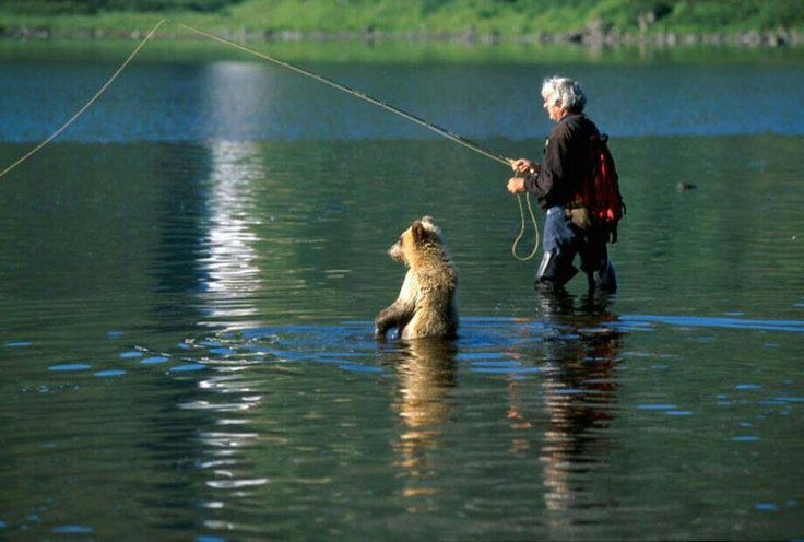 Gone fishing- who gets the fish? This is SO FUNNY! I wonder how the guy felt when he saw his erstwhile fishing partner!