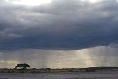 Passage To Africa - Amboseli - Kenya #Landscape