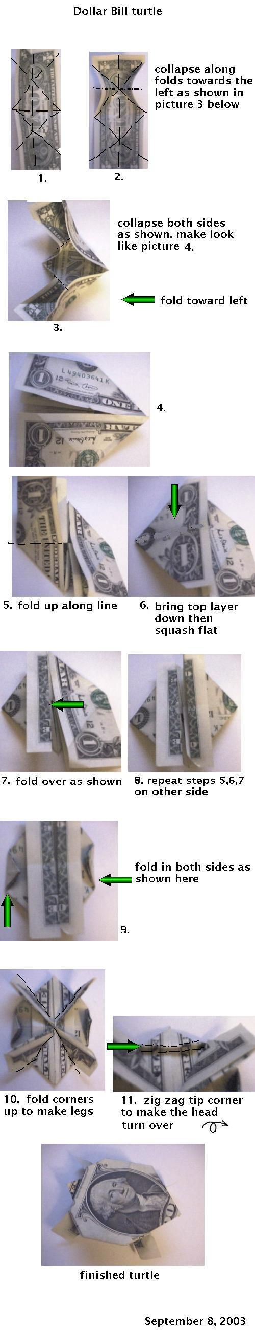 Origami money folding instructions cool ideas - Money Origami Turtle Casey