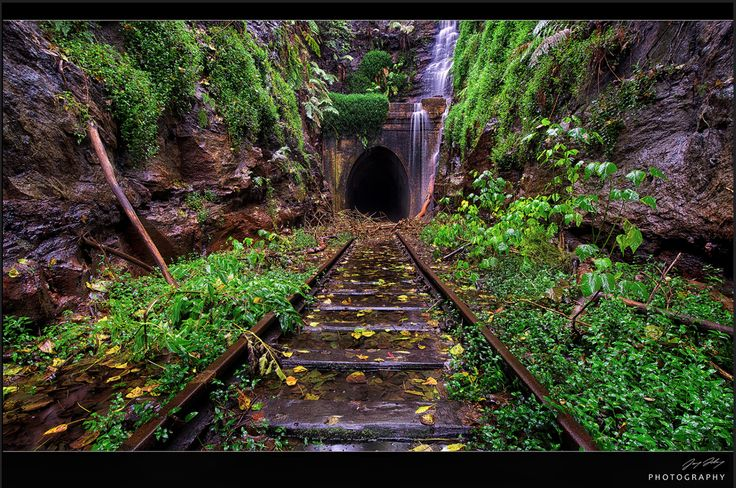 Helensburgh old railway tunnel