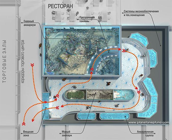 Для обхода экспозиции океанариума хватает одного часа, но залипнуть можно на все три.