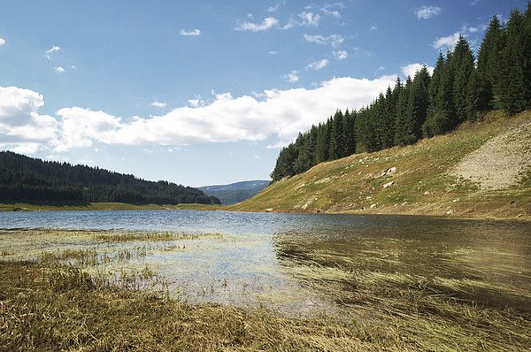 Vidra Lake, storage reservoir on Lotru River, Valcea_ Romania