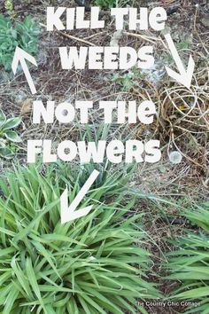 killing the weeds and not the flowers with this product