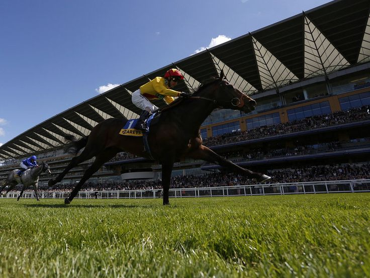 Jimmy Fortune riding Agent Murphy win The Carey Group Buckhounds Stakes at Ascot
