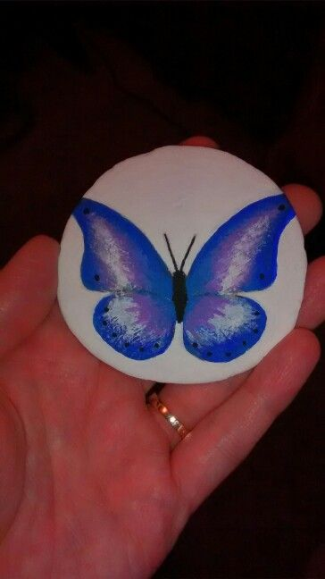 Butterfly painted on a sand dollar. (Handpainted by Brenda Preston)