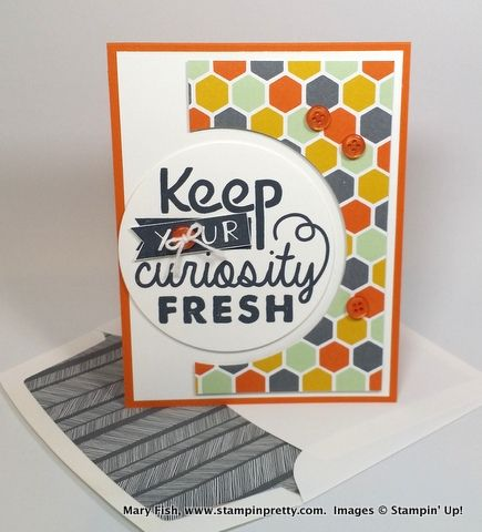 2382 best crafts stampin 39 up images on pinterest card for Stampin pretty craft room