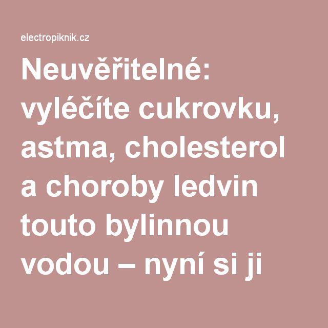 Neuvěřitelné: vyléčíte cukrovku, astma, cholesterol a choroby ledvin touto bylinnou vodou – nyní si ji můžete připravit sami - electropiknik.cz