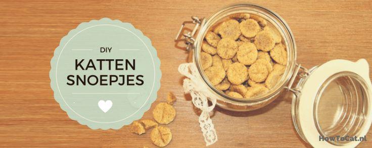 Kattensnoepjes maak je zelf met dit recept!