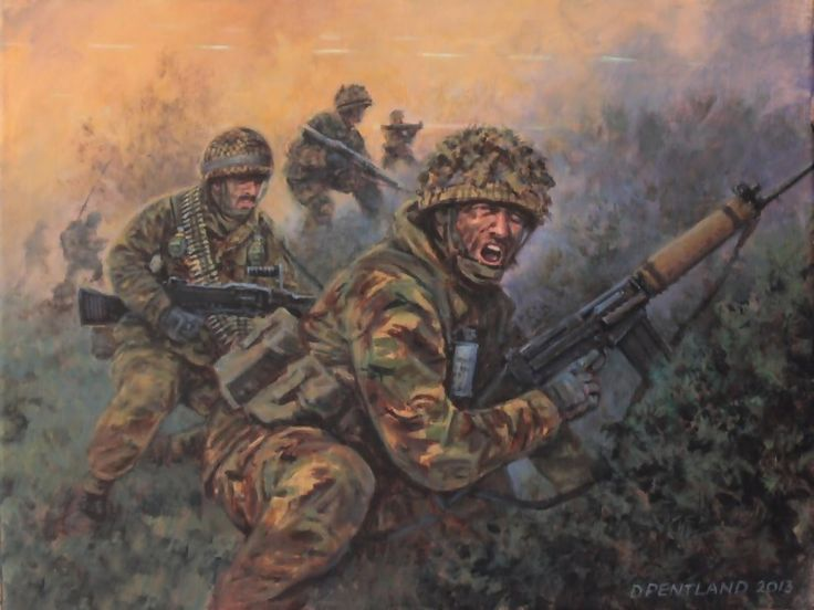 In the Gully, British troops in the Falklands War by David Pentland