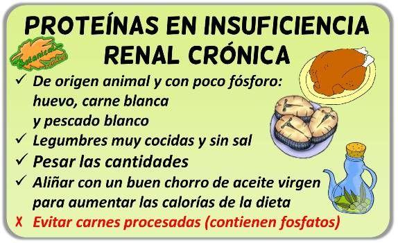 Dieta pobre em proteinas insuficiencia renal