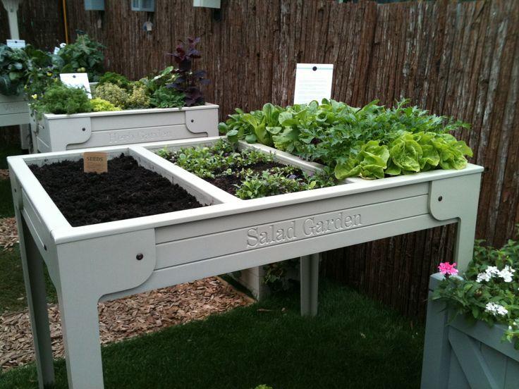 Vegetable trough - Chelsea Flower Show 2011