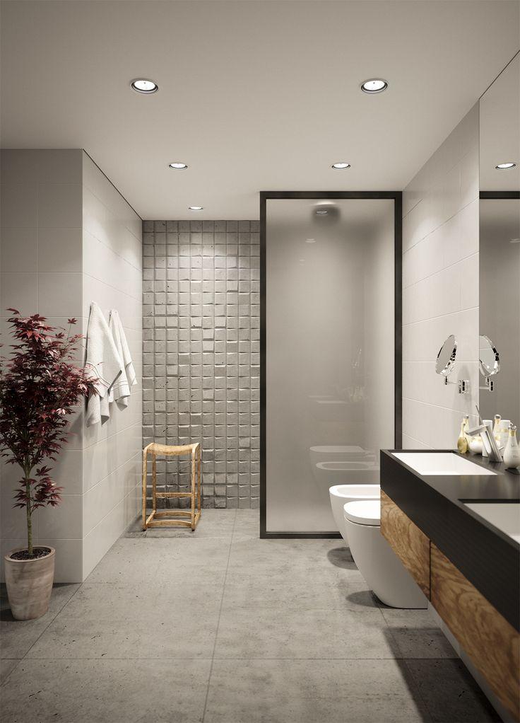 ścianka prysznicowa ze szkła i metalu