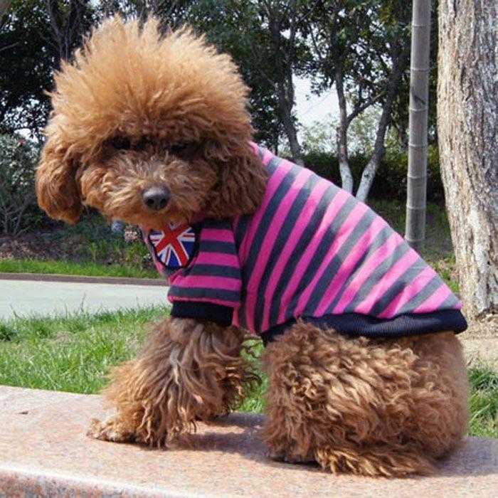 Kutyaruha, szürke-rózsaszín csíkos nyári kutyapóló - Szürke-rózsaszín csíkos kutyapóló XL-es méretben - Háthossz: 42cm - Bal vállán angol zászló díszeleg - Könnyen kezelhető, rövid ujjú kutyapóló - ShiTzu, Pekingi, Pudli, Mini Schnauzer, Mopsz, Cavalier Spániel kutyusoknak ajánljuk termékünket #kutyamodi #kutyaruha #dog #dogdress #cutedog