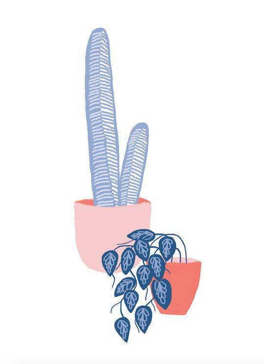 Affiche de plante de Pals. Cactus & Illustration de la par twamies