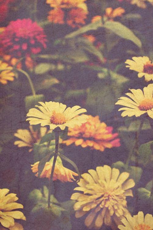 Tumblr_m6la4sf0f01rnfzueo1_500.jpg (500×750)