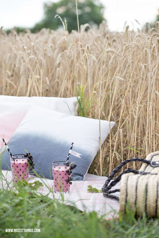 summer picknick outside field