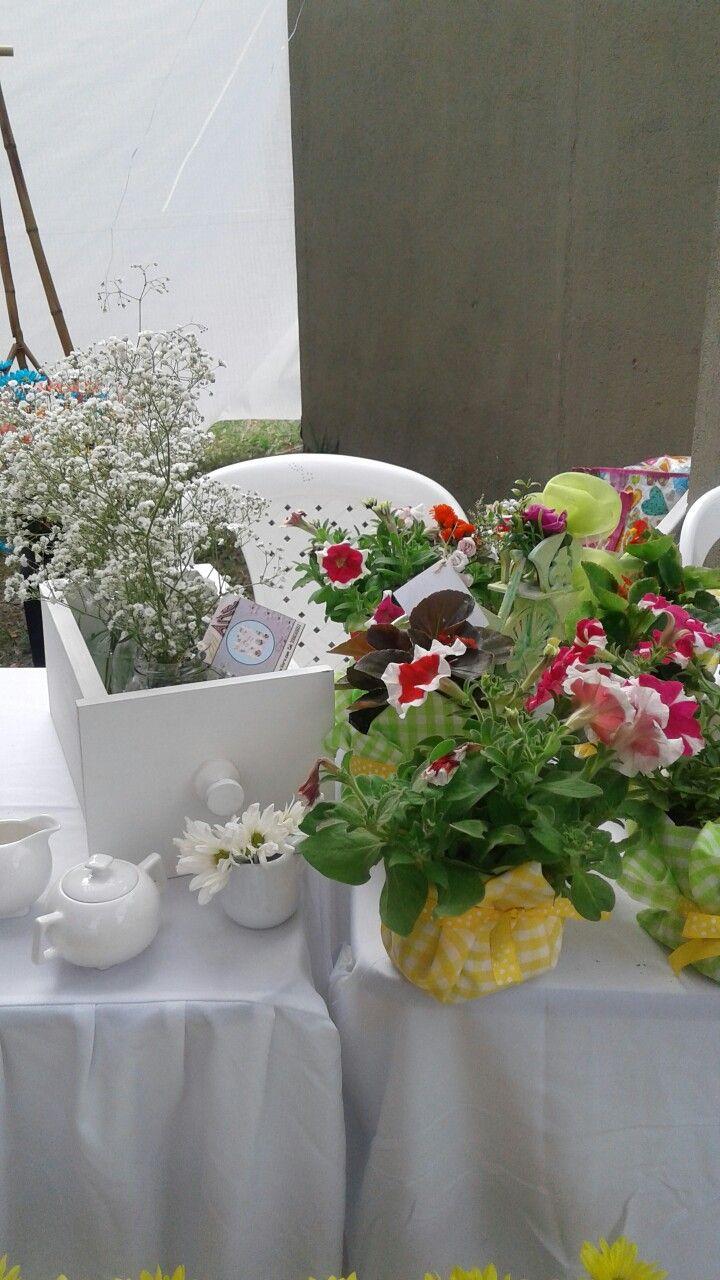 Decoracion mesa con plantas llamadas conservadoras
