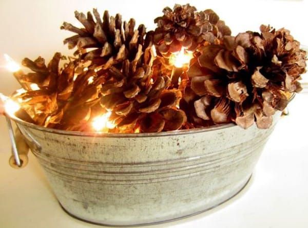 9. You Can't Go Wrong With Pinecones