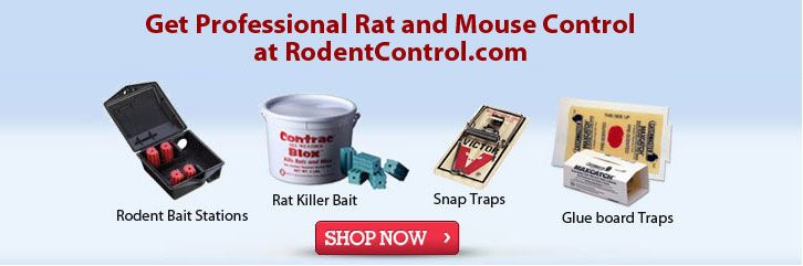 Professional rodent control products and supplies with free shipping