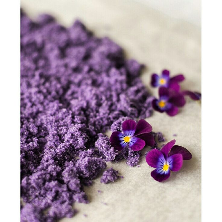 Say sugar! This viola sugar is so easy to make. It is also so floricious!  Great to usein for baking. #floricious #floralfood #edibleflowers #viola #violet #pansy #violasugar #bookcomingup