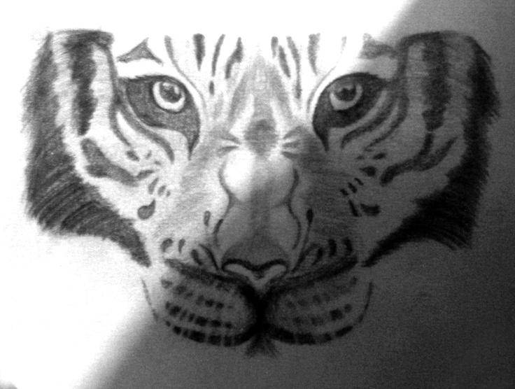 Dibujo del Rostro de un Tigre. Hecho a lápiz.