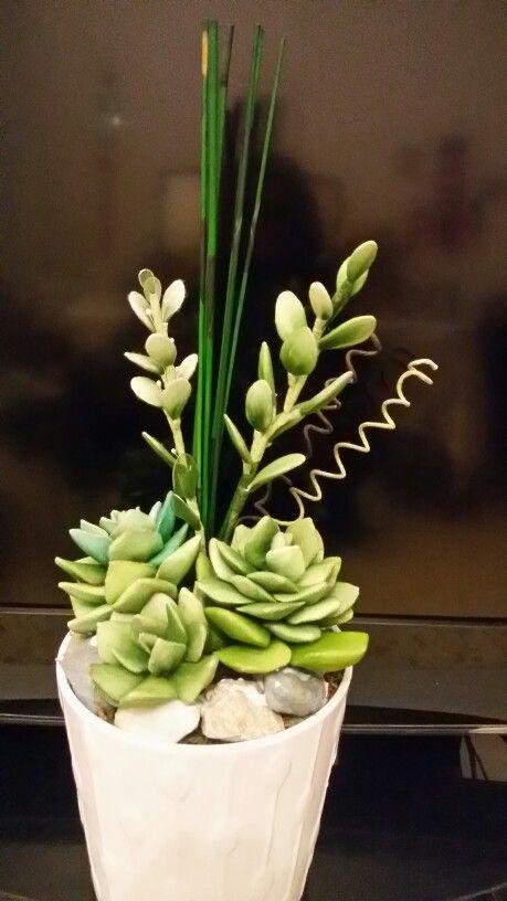 piante grasse in nylon