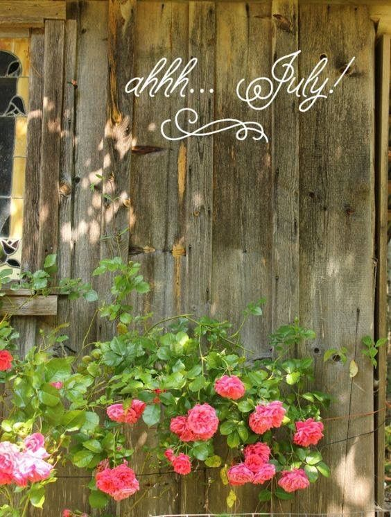 Hello July! ❤️
