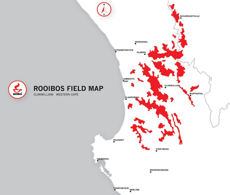 Rooibos Ltd | About Rooibos | The Cederberg Region