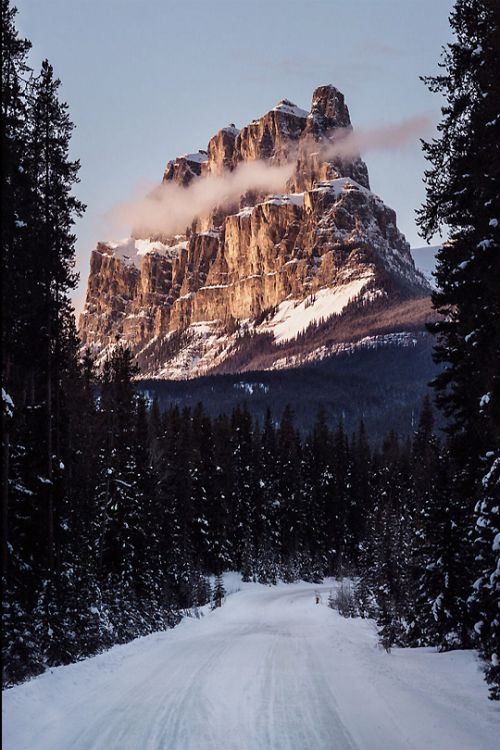 25 best ideas about banff national parks on pinterest for Best winter vacations in canada