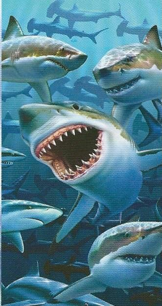 Sharks! Wholesale Beach Towels