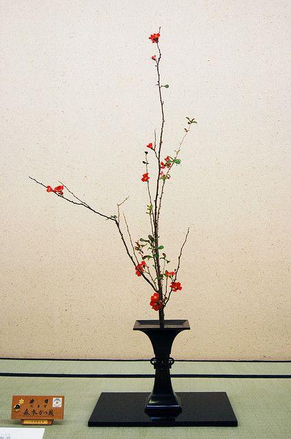 Ikebana Ikenobo | Flickr - Photo Sharing!