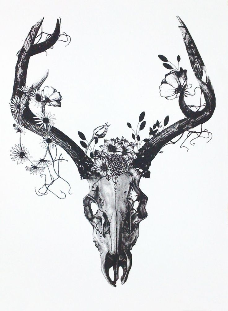 Deer Skull with Charcoal Flowers