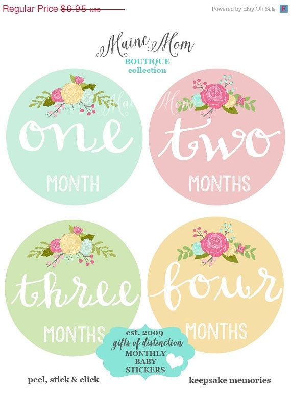HUGE SALE GIFT  Monthly Baby Girl Stickers Month Roses Floral Stickers Milestone Bodysuit Nursery Decor Photo Prop