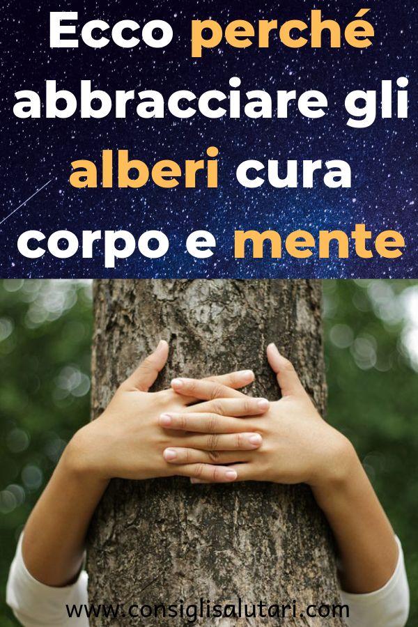 Ecco perché abbracciare gli alberi cura corpo e mente #benessere #beauty #salut…