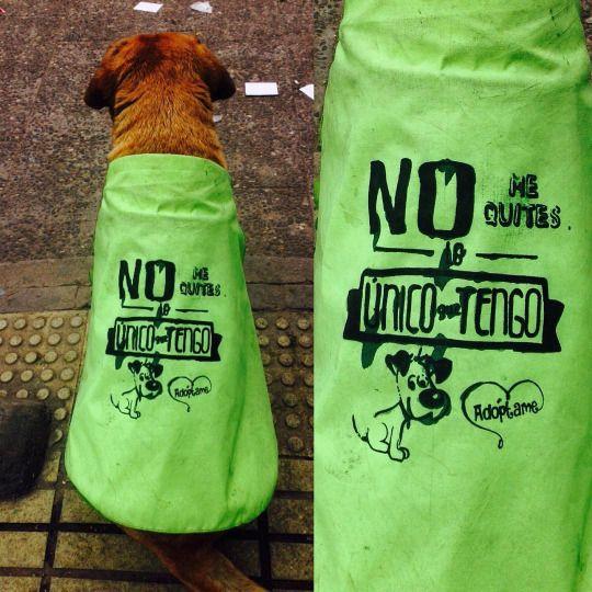 Vida de perros #perro (en Estación Mapocho)