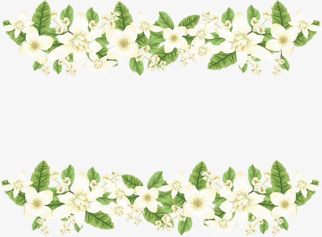 Romantic White Jasmine Border Vector Png Wedding Border Romantic Vector Png Transparent Clipart Image And Psd File For Free Download Flower Backround Jasmine Flower Color Pencil Illustration