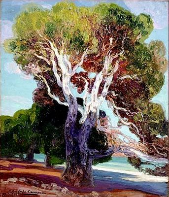 Hermenegildo Anglada Camarasa (Barcelona, 1871-1959) ~ El pino de Formentor