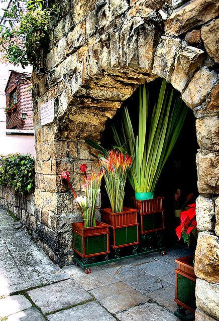 Flower Shop Provence