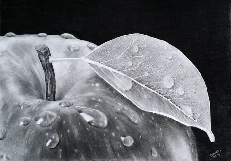 Pencil Drawing By South African Artist Benadia